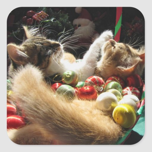 Two Christmas Kitty Cats, Kittens Together, Basket Square Sticker