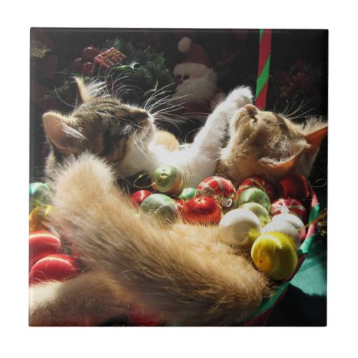 Two Christmas Kitty Cats, Kittens Together, Basket Small Square Tile