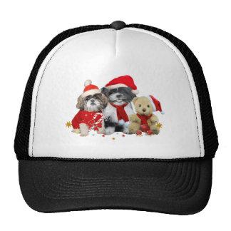 Two Christmas Shih Tzu Dogs & Teddy Bear Mesh Hat