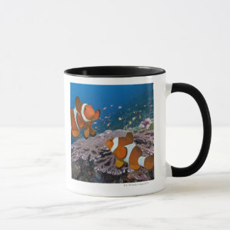 Two Clownfish Mug