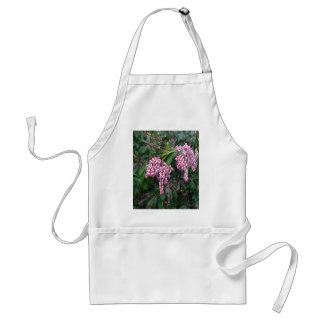 Two Clusters of Pink Japanese Andromeda Adult Apron