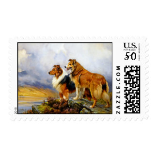 Two Collie Dogs above a Lake Postage