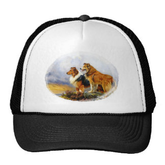 Two Collies above a Lake by Wright Barker Trucker Hat