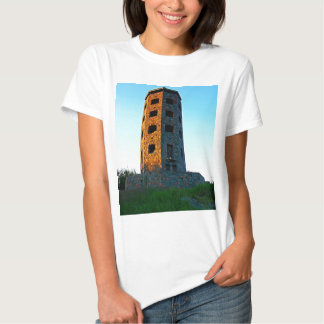 Two Colored Enger Tower T-shirt