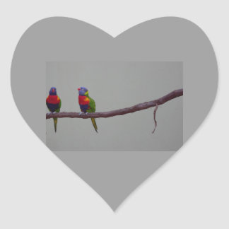 Two Colorful Birds Photo Heart Sticker