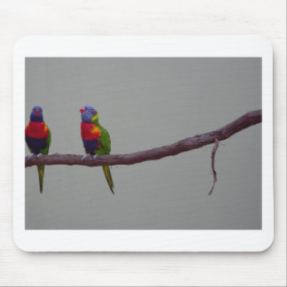 Two Colorful Birds Photo Mouse Pad