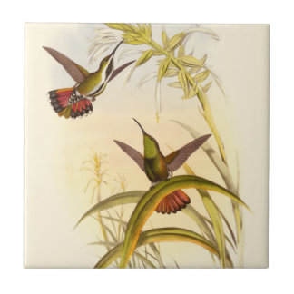 Two Colorful Hummingbirds Aiming for Same Flower Ceramic Tile