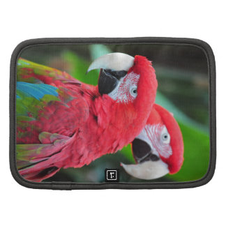Two colorful macaw parrots folio planners