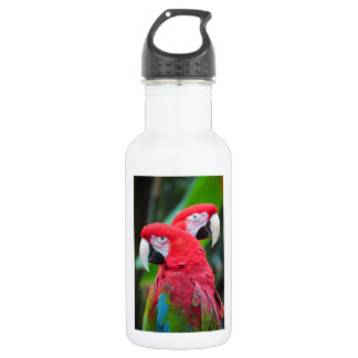 Two colorful macaw parrots stainless steel water bottle