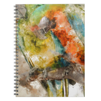 Two Colorful Macaws Notebook