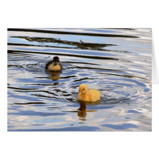 Two Coloured Ducklings Card