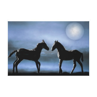 Two colts making friends canvas print