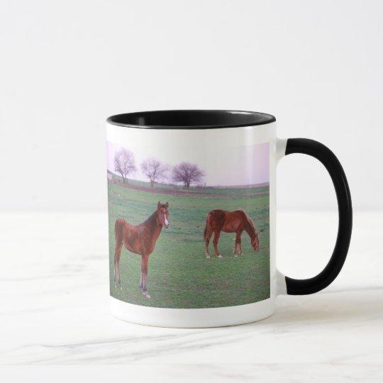 Two Colts On An Amish Farm Mug