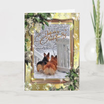 Two Corgis in the Snow with Frame Holiday Card
