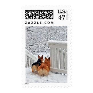 Two Corgis in winter snow Postage