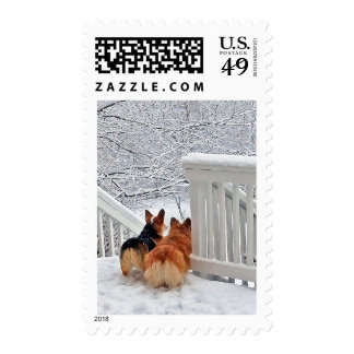 Two Corgis in winter snow Stamps