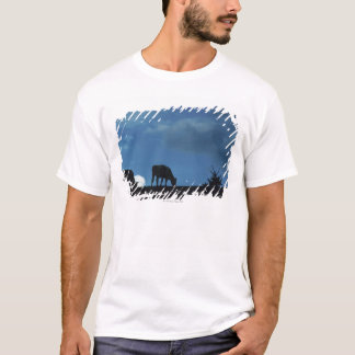 Two cows in silhouette grazing on hillside T-Shirt