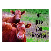 Two Cows  We Herd You Mooved!