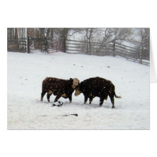 Two Cows While Snowing Card