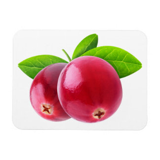 Two cranberries magnet