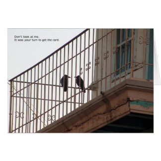 two crows birthday card