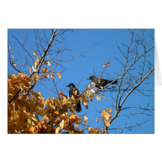Two crows greeting card