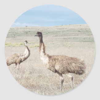two curious emu's classic round sticker