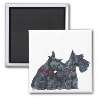 Two Curious Scottish Terriers 2 Inch Square Magnet