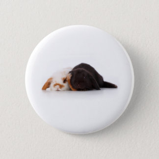 Two cute baby bunnies pinback button