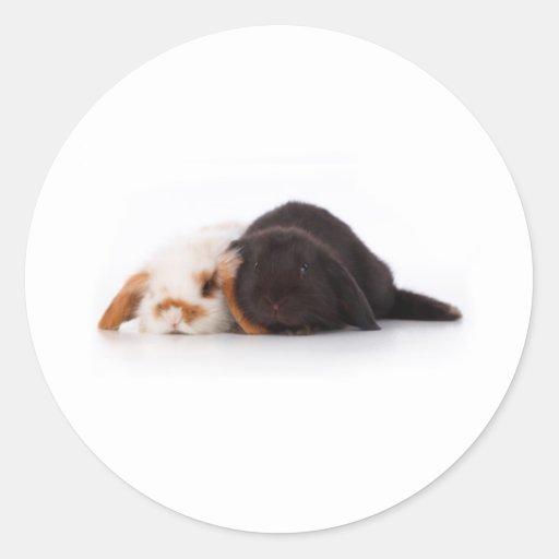 Two cute baby bunnies round sticker