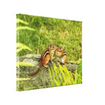 Two Cute Baby Chipmunks Gallery Wrap Canvas