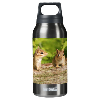Two Cute Baby Chipmunks Insulated Water Bottle