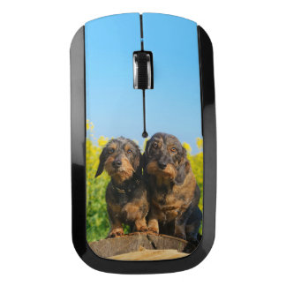 Two Cute Dachshund Dogs Dackel Portrait Photo _ Wireless Mouse