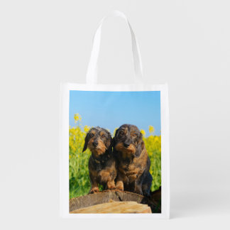 Two Cute Dachshunds Dogs Dackel Friends Pet Photo Grocery Bag