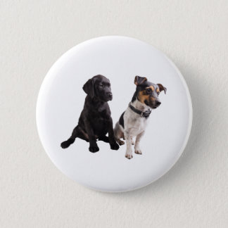 two cute dogs pinback button