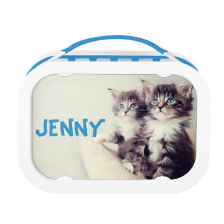 Two Cute Kittens Cat Lunch Box School at Zazzle