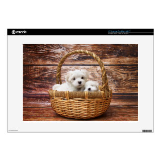 """Two cute Maltese puppies sitting in a basket 15"""" Laptop Decal"""
