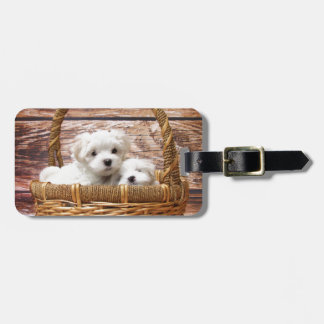 Two cute Maltese puppies sitting in a basket Bag Tag