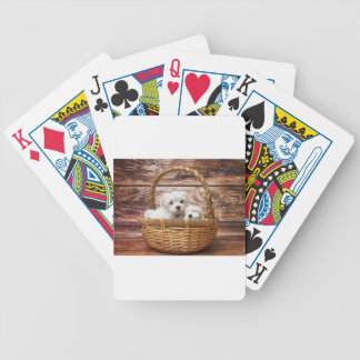 Two cute Maltese puppies sitting in a basket Bicycle Playing Cards