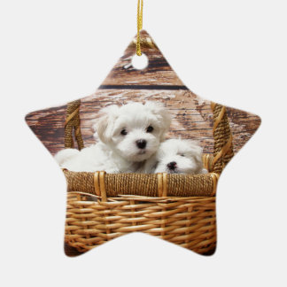 Two cute Maltese puppies sitting in a basket Ceramic Ornament