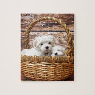 Two cute Maltese puppies sitting in a basket Jigsaw Puzzle