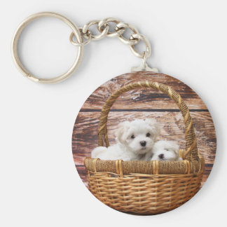 Two cute Maltese puppies sitting in a basket Keychain