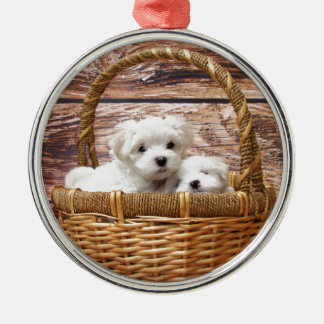 Two cute Maltese puppies sitting in a basket Metal Ornament