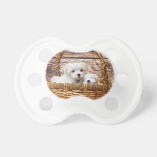 Two cute Maltese puppies sitting in a basket Pacifier