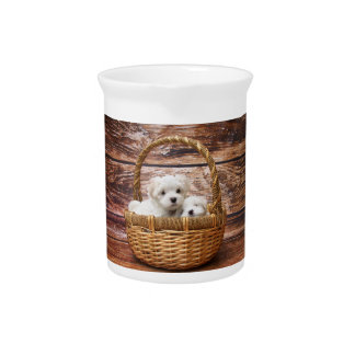 Two cute Maltese puppies sitting in a basket Pitcher