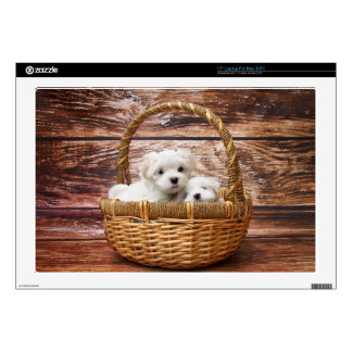 """Two cute Maltese puppies sitting in a basket Skin For 17"""" Laptop"""