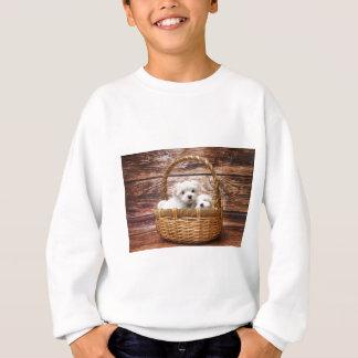 Two cute Maltese puppies sitting in a basket Sweatshirt