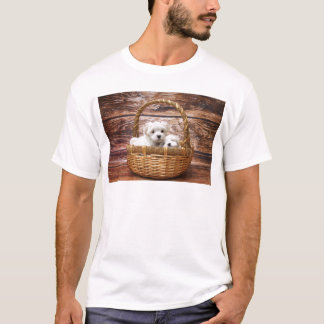 Two cute Maltese puppies sitting in a basket T-Shirt