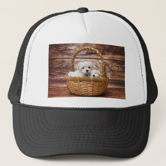 Two cute Maltese puppies sitting in a basket Trucker Hat