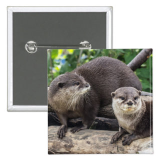 Two Cute Otters | Otter Button